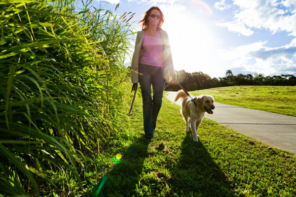 Were you looking forward to going out? Make the most of your daily walk